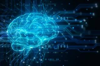 3 Brain Systems That Control Your Behavior: Reptilian, Limbic, Neo Cortex