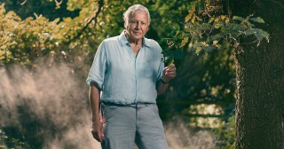 Sir David Attenborough Warns About the Connection between Animal Extinction and Pandemics